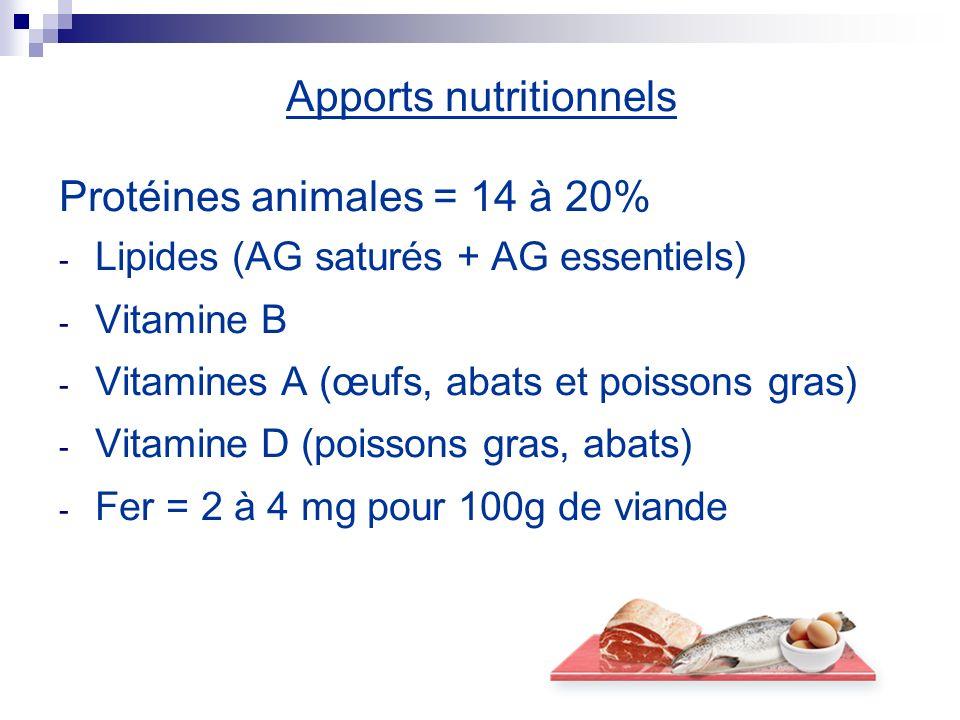 Apports nutritionnels Protéines animales = 14 à 20% - Lipides (AG saturés + AG essentiels) - Vitamine B - Vitamines A (œufs, abats et poissons gras) -
