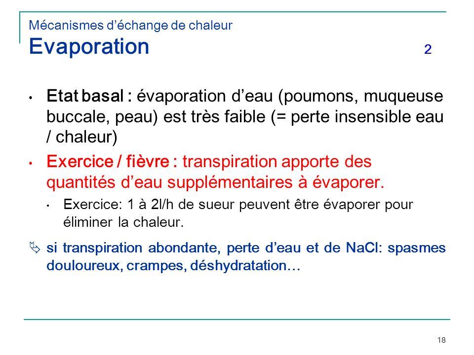 18 Mécanismes déchange de chaleur Evaporation 2 Etat basal : évaporation deau (poumons, muqueuse buccale, peau) est très faible (= perte insensible ea