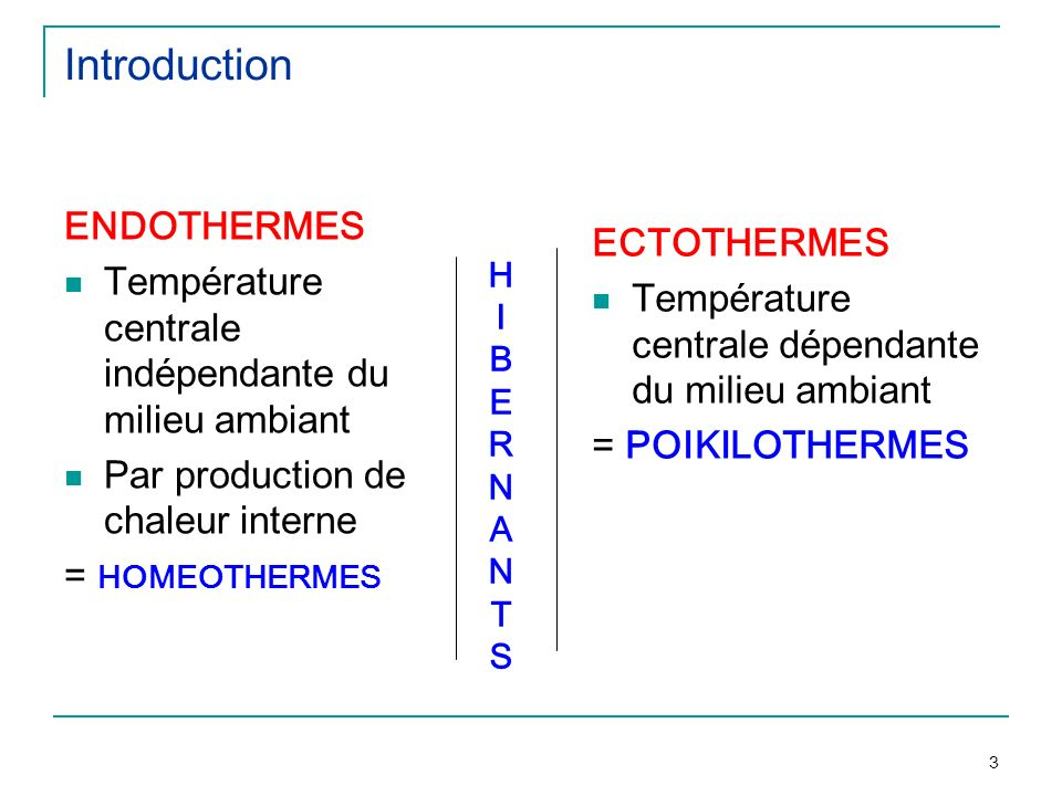 3 HIBERNANTSHIBERNANTS Introduction ENDOTHERMES Température centrale indépendante du milieu ambiant Par production de chaleur interne = HOMEOTHERMES E