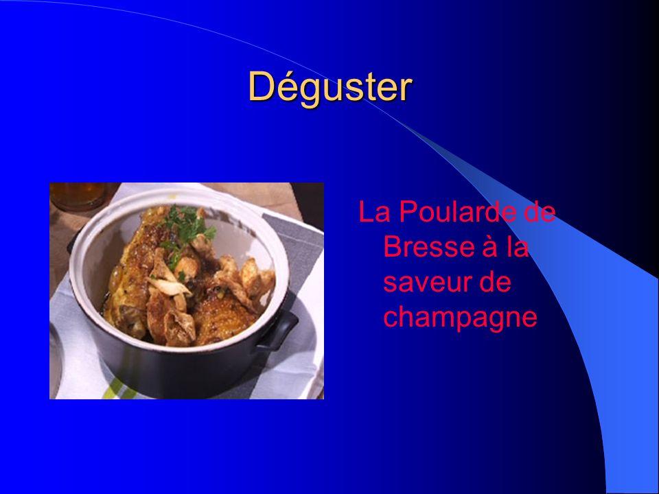 Déguster Le boeuf bourguignon