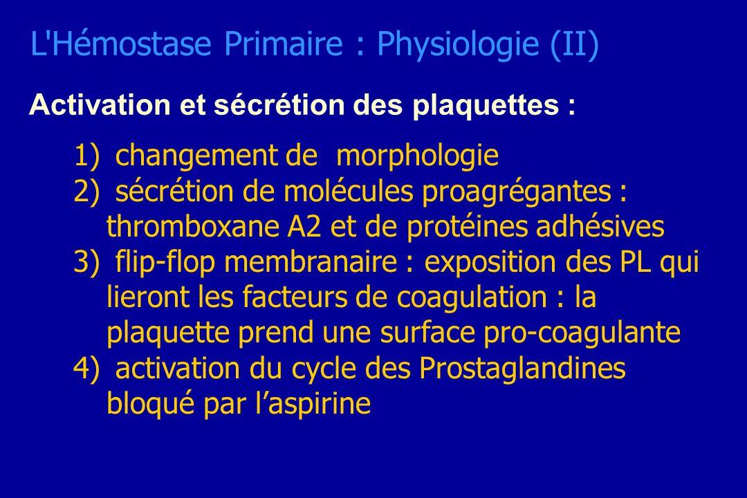 Activation et sécrétion des plaquettes : 1) changement de morphologie 2) sécrétion de molécules proagrégantes : thromboxane A2 et de protéines adhésiv