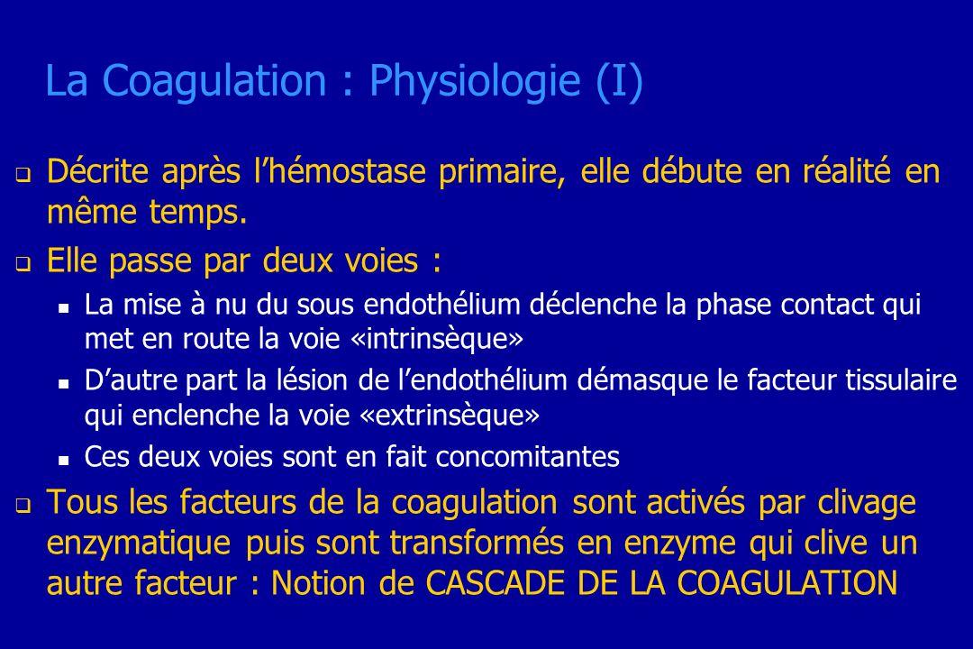 La Coagulation : Physiologie (I) Décrite après lhémostase primaire, elle débute en réalité en même temps. Elle passe par deux voies : La mise à nu du