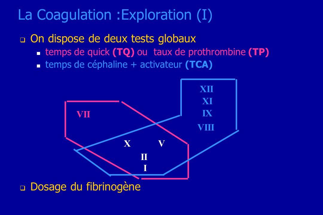 La Coagulation :Exploration (I) On dispose de deux tests globaux temps de quick (TQ) ou taux de prothrombine (TP) temps de céphaline + activateur (TCA