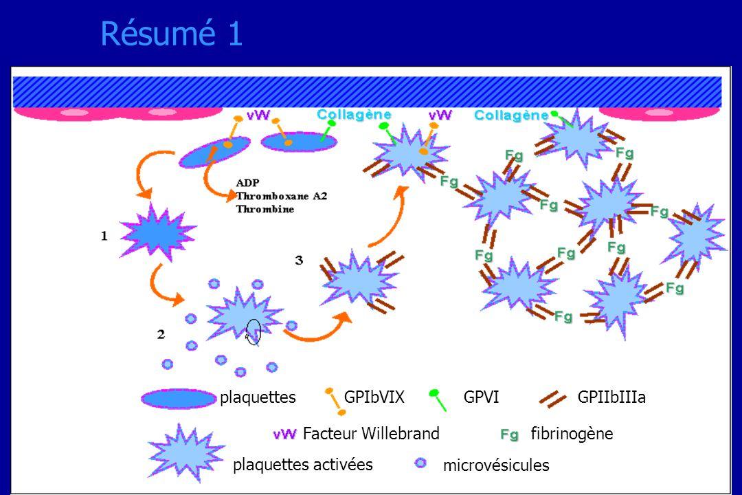 plaquettes plaquettes activées Facteur Willebrand microvésicules fibrinogène GPIbVIXGPVIGPIIbIIIa Résumé 1