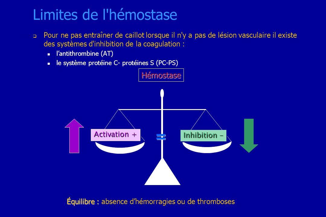 Équilibre : Équilibre : absence dhémorragies ou de thromboses Hémostase = Activation + Inhibition - Limites de l'hémostase Pour ne pas entraîner de ca