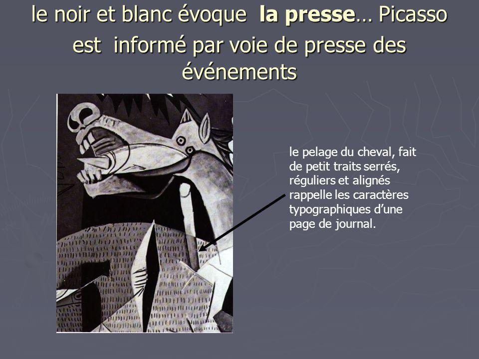 le noir et blanc évoque la presse… Picasso est informé par voie de presse des événements le pelage du cheval, fait de petit traits serrés, réguliers e
