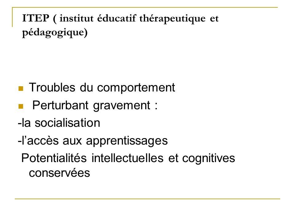 ITEP ( institut éducatif thérapeutique et pédagogique) Troubles du comportement Perturbant gravement : -la socialisation -laccès aux apprentissages Po