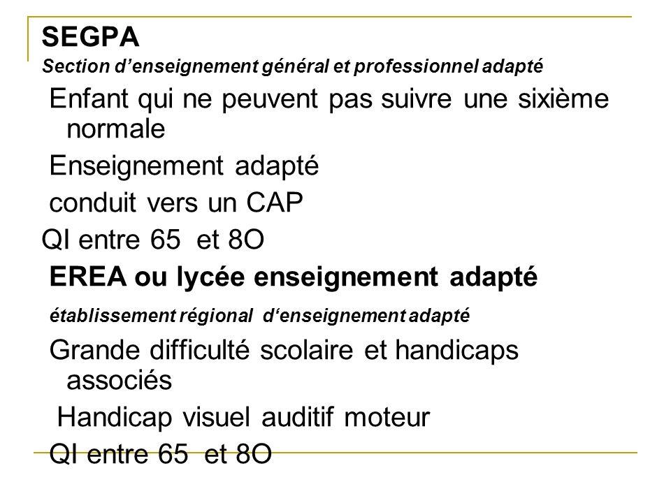 SEGPA Section denseignement général et professionnel adapté Enfant qui ne peuvent pas suivre une sixième normale Enseignement adapté conduit vers un C