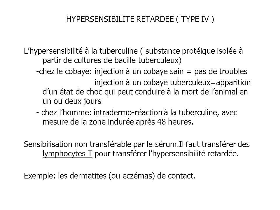 HYPERSENSIBILITE RETARDEE ( TYPE IV ) Lhypersensibilité à la tuberculine ( substance protéique isolée à partir de cultures de bacille tuberculeux) -ch