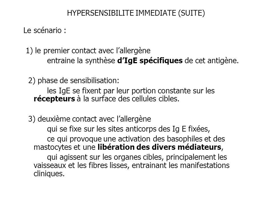 HYPERSENSIBILITE IMMEDIATE (SUITE) Le scénario : 1) le premier contact avec lallergène entraine la synthèse dIgE spécifiques de cet antigène. 2) phase