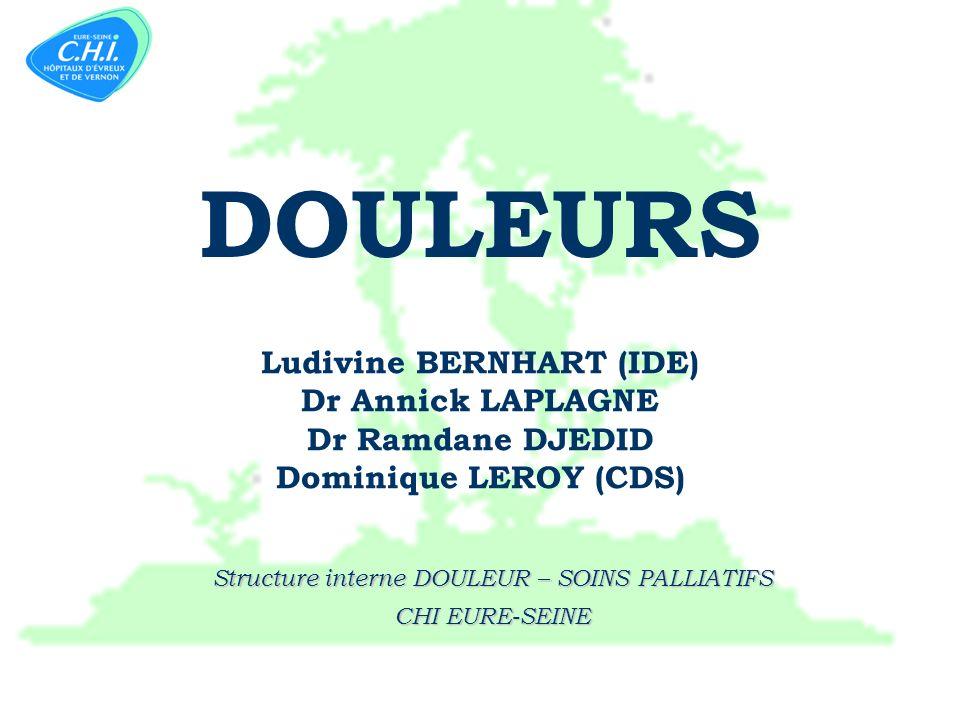 ARL- AL-Alep-DL 2011 1 Structure interne DOULEUR – SOINS PALLIATIFS CHI EURE-SEINE Ludivine BERNHART (IDE) Dr Annick LAPLAGNE Dr Ramdane DJEDID Dominique LEROY (CDS) DOULEURS