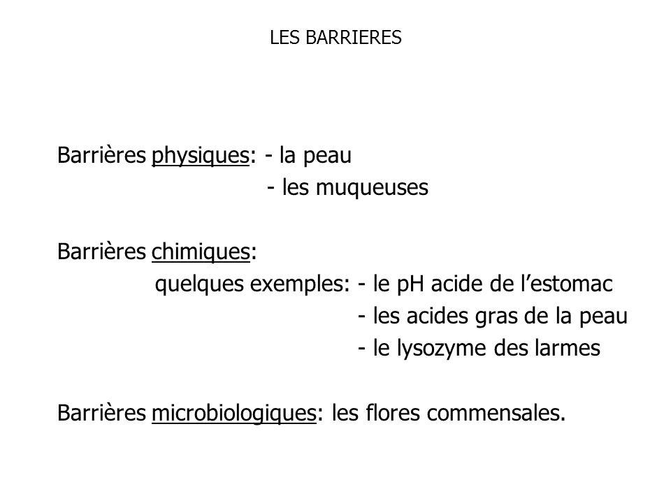 LES BARRIERES Barrières physiques: - la peau - les muqueuses Barrières chimiques: quelques exemples: - le pH acide de lestomac - les acides gras de la