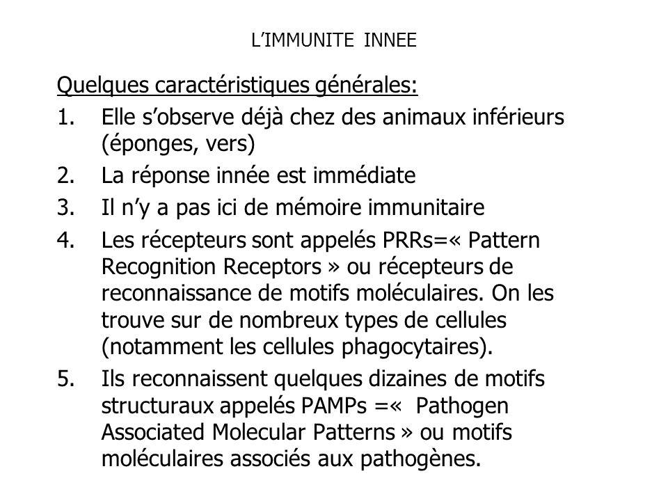 LIMMUNITE INNEE Quelques caractéristiques générales: 1.Elle sobserve déjà chez des animaux inférieurs (éponges, vers) 2.La réponse innée est immédiate
