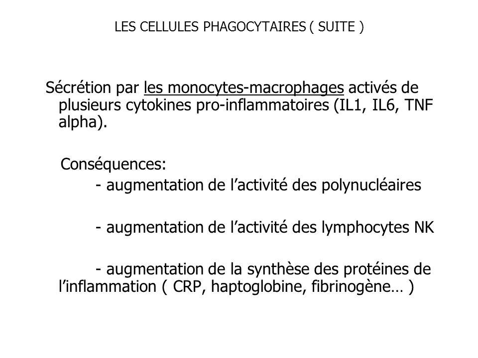 LES CELLULES PHAGOCYTAIRES ( SUITE ) Sécrétion par les monocytes-macrophages activés de plusieurs cytokines pro-inflammatoires (IL1, IL6, TNF alpha).