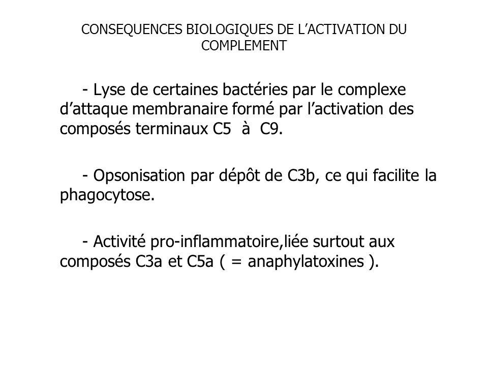 CONSEQUENCES BIOLOGIQUES DE LACTIVATION DU COMPLEMENT - Lyse de certaines bactéries par le complexe dattaque membranaire formé par lactivation des com