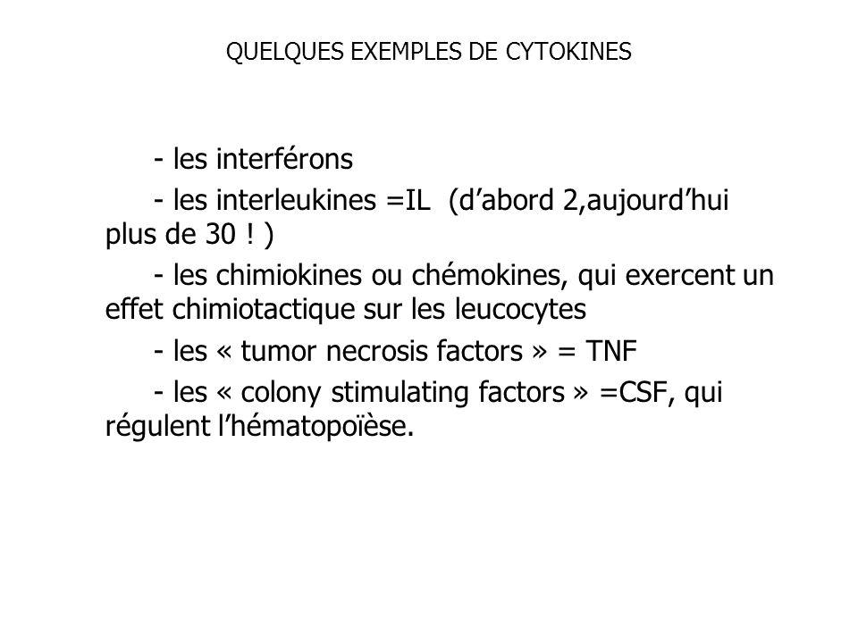 QUELQUES EXEMPLES DE CYTOKINES - les interférons - les interleukines =IL (dabord 2,aujourdhui plus de 30 ! ) - les chimiokines ou chémokines, qui exer
