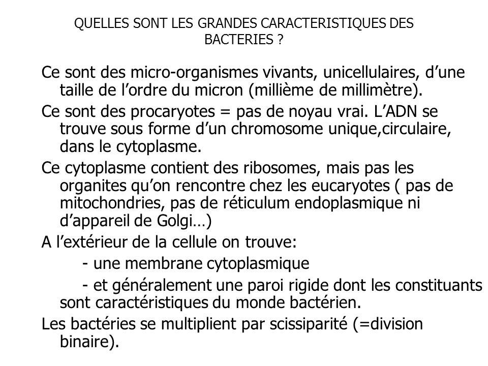 QUELLES SONT LES GRANDES CARACTERISTIQUES DES BACTERIES ? Ce sont des micro-organismes vivants, unicellulaires, dune taille de lordre du micron (milli