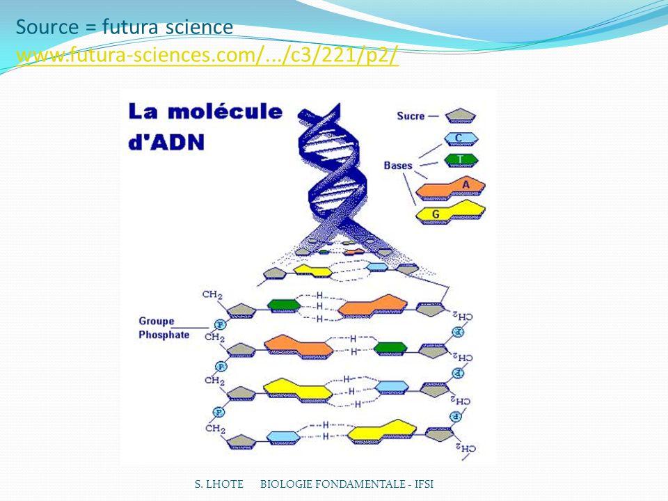 Source = futura science www.futura-sciences.com/.../c3/221/p2/ www.futura-sciences.com/.../c3/221/p2/ S.
