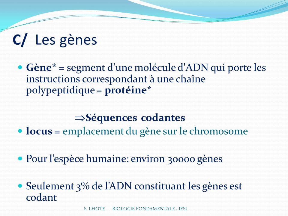 C/ Les gènes Gène* = segment d une molécule d ADN qui porte les instructions correspondant à une chaîne polypeptidique = protéine* Séquences codantes locus = emplacement du gène sur le chromosome Pour lespèce humaine: environ 30000 gènes Seulement 3% de lADN constituant les gènes est codant S.