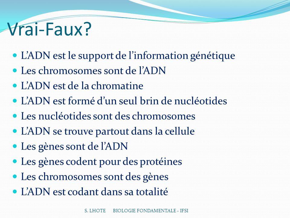 Vrai-Faux? LADN est le support de linformation génétique Les chromosomes sont de lADN LADN est de la chromatine LADN est formé dun seul brin de nucléo