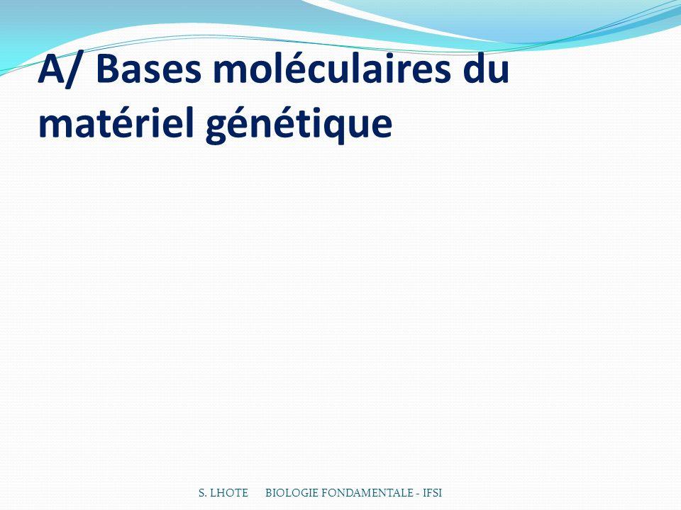 A/ Bases moléculaires du matériel génétique S. LHOTE BIOLOGIE FONDAMENTALE - IFSI