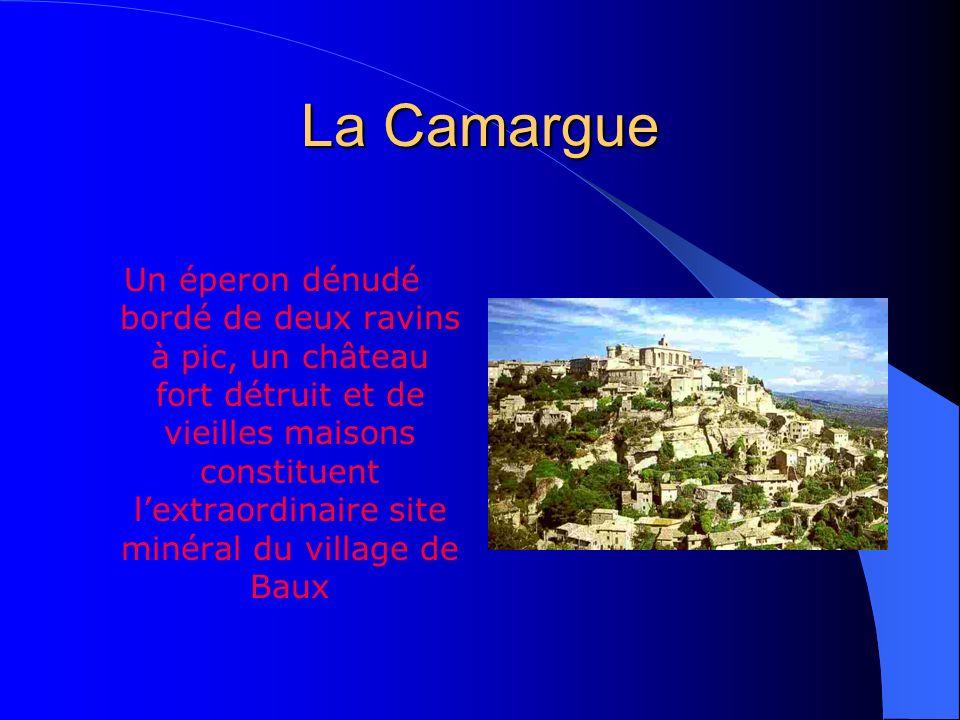 La Camargue Le Parc Naturel de la Camargue
