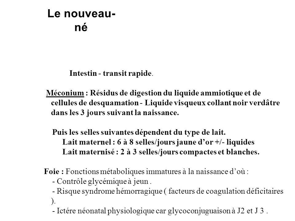 Intestin - transit rapide. Méconium : Résidus de digestion du liquide ammiotique et de cellules de desquamation - Liquide visqueux collant noir verdât