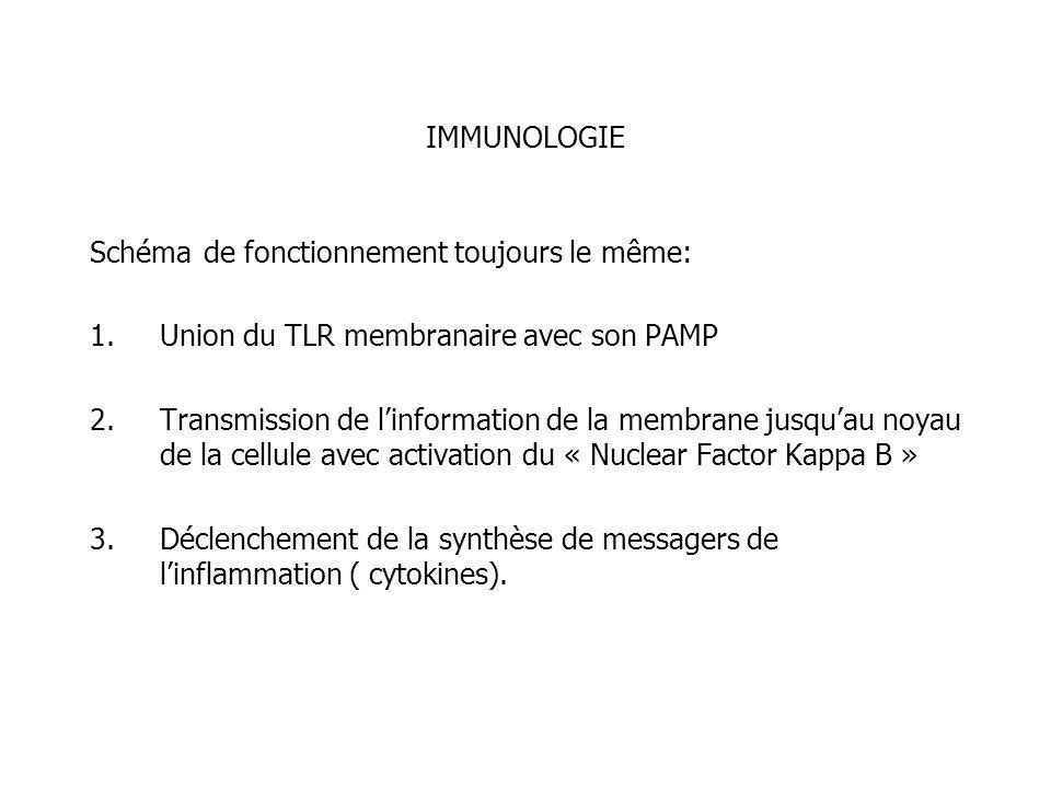 IMMUNOLOGIE Schéma de fonctionnement toujours le même: 1.Union du TLR membranaire avec son PAMP 2.Transmission de linformation de la membrane jusquau