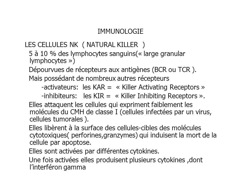 IMMUNOLOGIE LES CELLULES NK ( NATURAL KILLER ) 5 à 10 % des lymphocytes sanguins(« large granular lymphocytes ») Dépourvues de récepteurs aux antigène