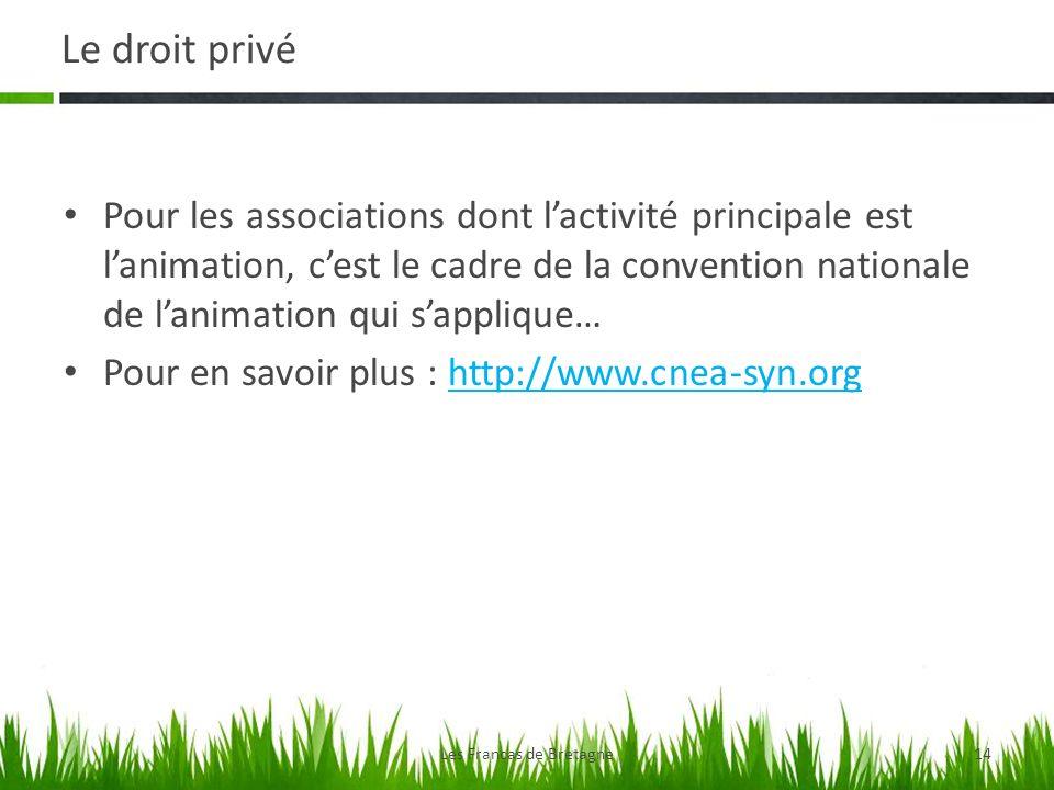 Le droit privé Les Francas de Bretagne14 Pour les associations dont lactivité principale est lanimation, cest le cadre de la convention nationale de lanimation qui sapplique… Pour en savoir plus : http://www.cnea-syn.orghttp://www.cnea-syn.org