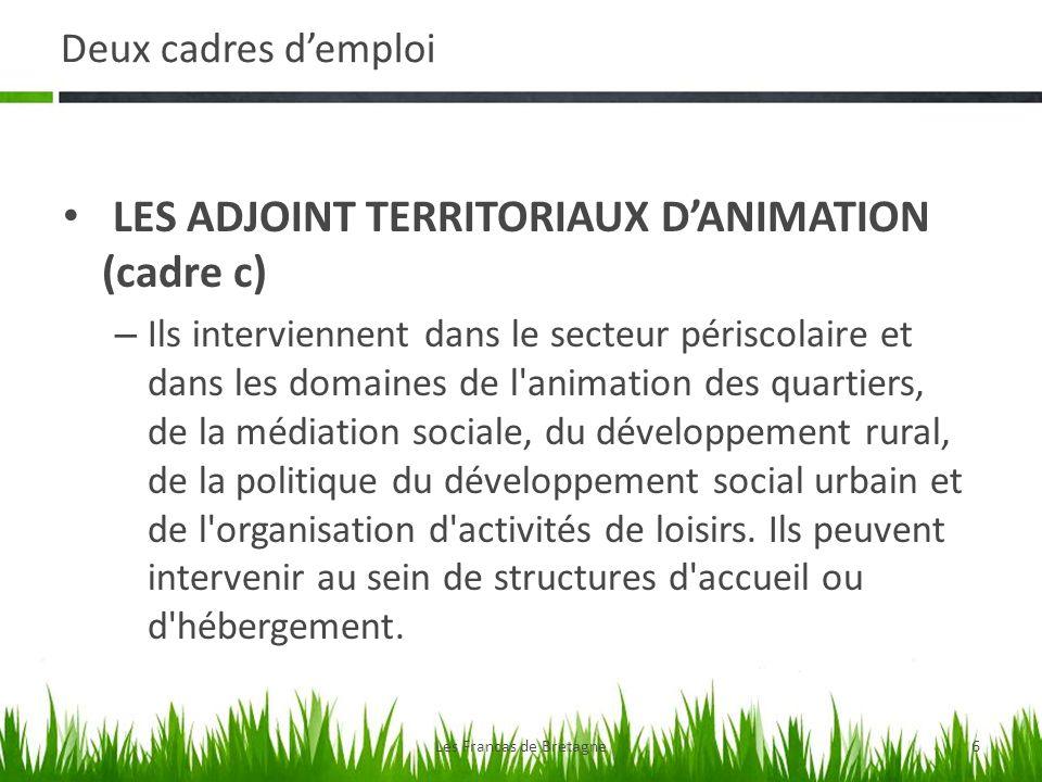 Deux cadres demploi LES ADJOINT TERRITORIAUX DANIMATION (cadre c) – Ils interviennent dans le secteur périscolaire et dans les domaines de l animation des quartiers, de la médiation sociale, du développement rural, de la politique du développement social urbain et de l organisation d activités de loisirs.