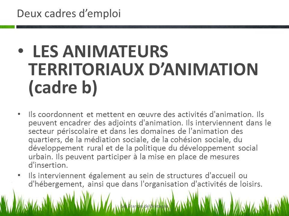Deux cadres demploi LES ANIMATEURS TERRITORIAUX DANIMATION (cadre b) Ils coordonnent et mettent en œuvre des activités d'animation. Ils peuvent encadr