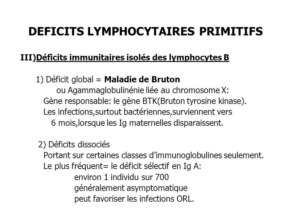DEFICITS LYMPHOCYTAIRES PRIMITIFS III)Déficits immunitaires isolés des lymphocytes B 1) Déficit global = Maladie de Bruton ou Agammaglobulinénie liée
