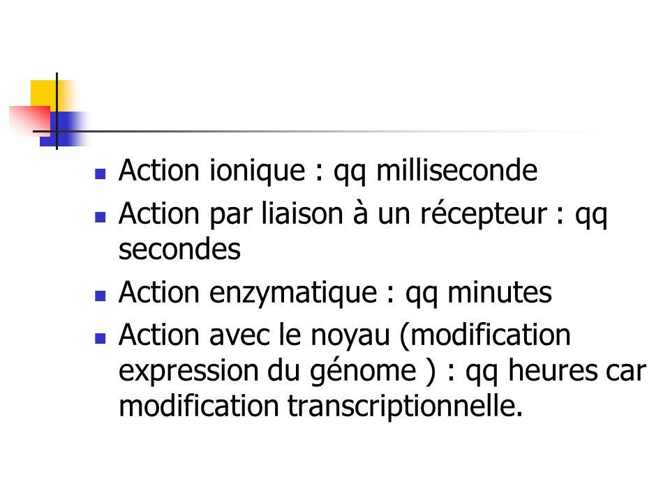 Action ionique : qq milliseconde Action par liaison à un récepteur : qq secondes Action enzymatique : qq minutes Action avec le noyau (modification ex