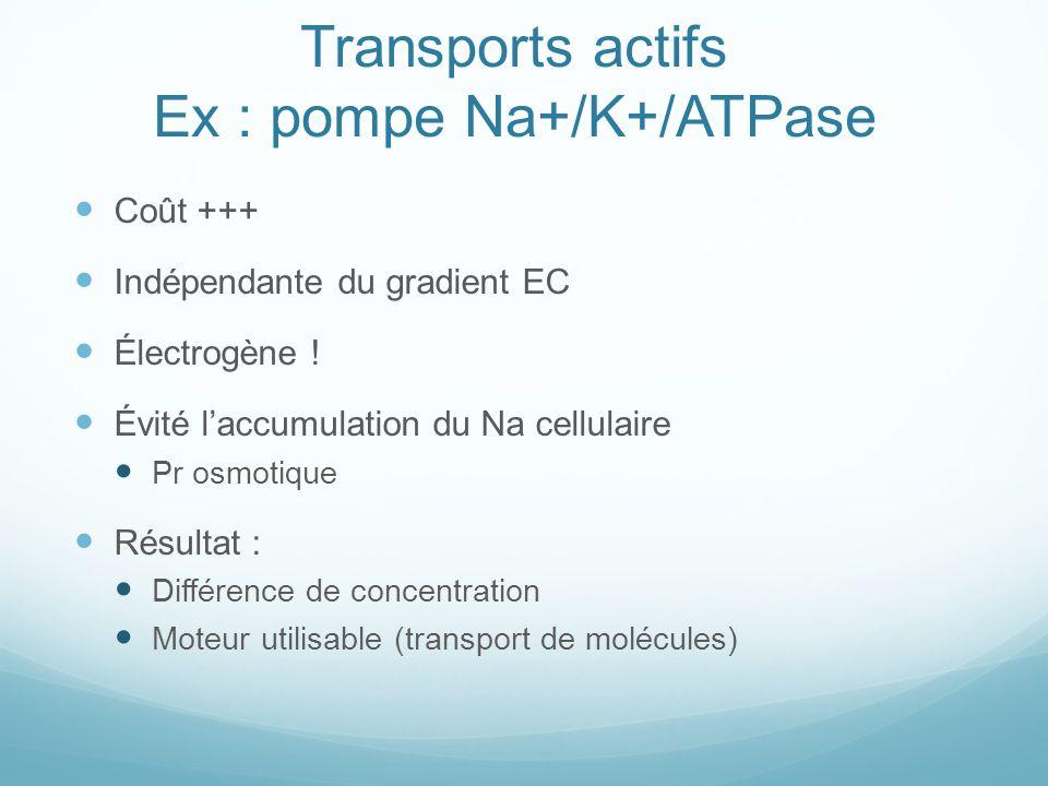 Transports actifs Ex : pompe Na+/K+/ATPase Coût +++ Indépendante du gradient EC Électrogène ! Évité laccumulation du Na cellulaire Pr osmotique Résult