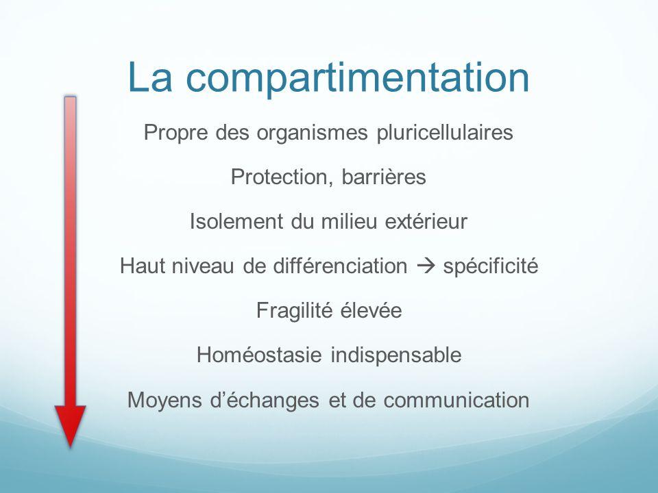 La compartimentation Propre des organismes pluricellulaires Protection, barrières Isolement du milieu extérieur Haut niveau de différenciation spécifi
