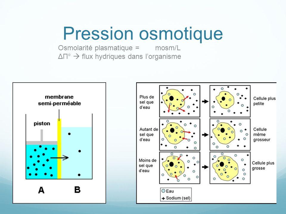 Pression osmotique Osmolarité plasmatique = mosm/L ΔΠ° flux hydriques dans lorganisme