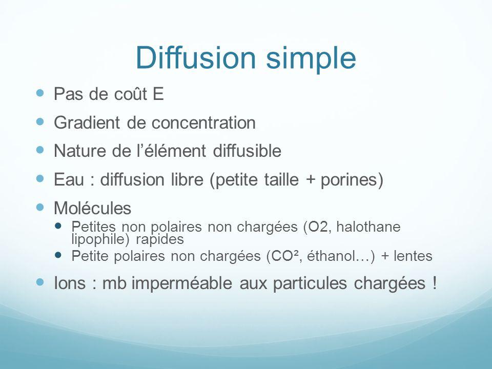Diffusion simple Pas de coût E Gradient de concentration Nature de lélément diffusible Eau : diffusion libre (petite taille + porines) Molécules Petit