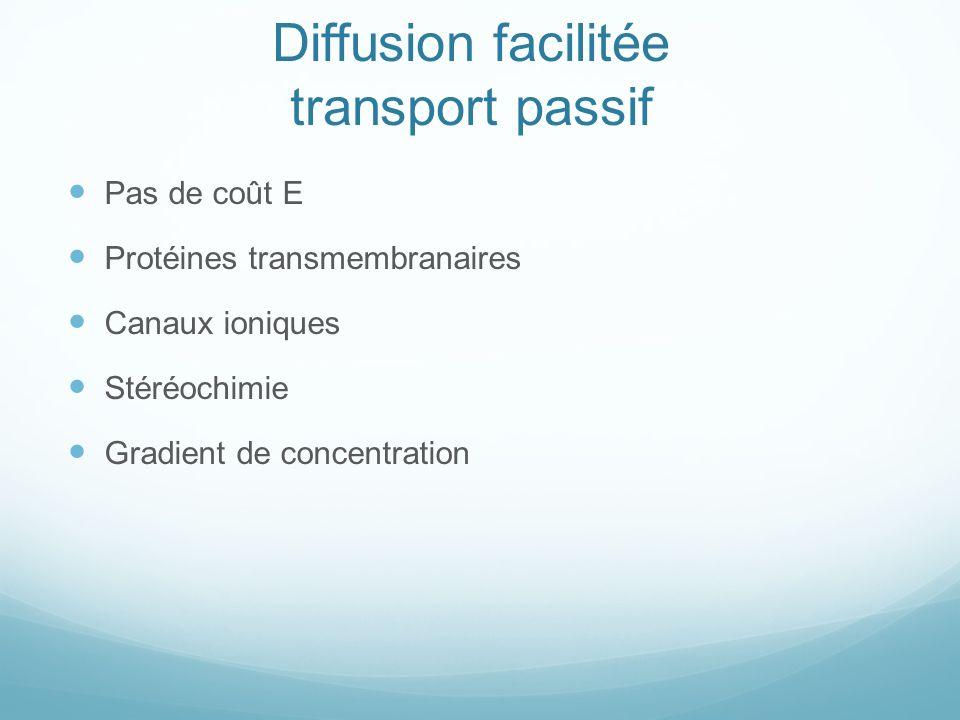 Diffusion facilitée transport passif Pas de coût E Protéines transmembranaires Canaux ioniques Stéréochimie Gradient de concentration