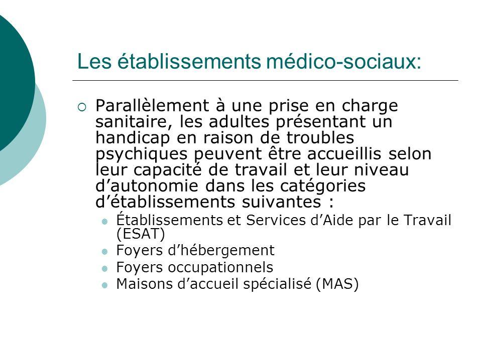 Les établissements médico-sociaux: Parallèlement à une prise en charge sanitaire, les adultes présentant un handicap en raison de troubles psychiques