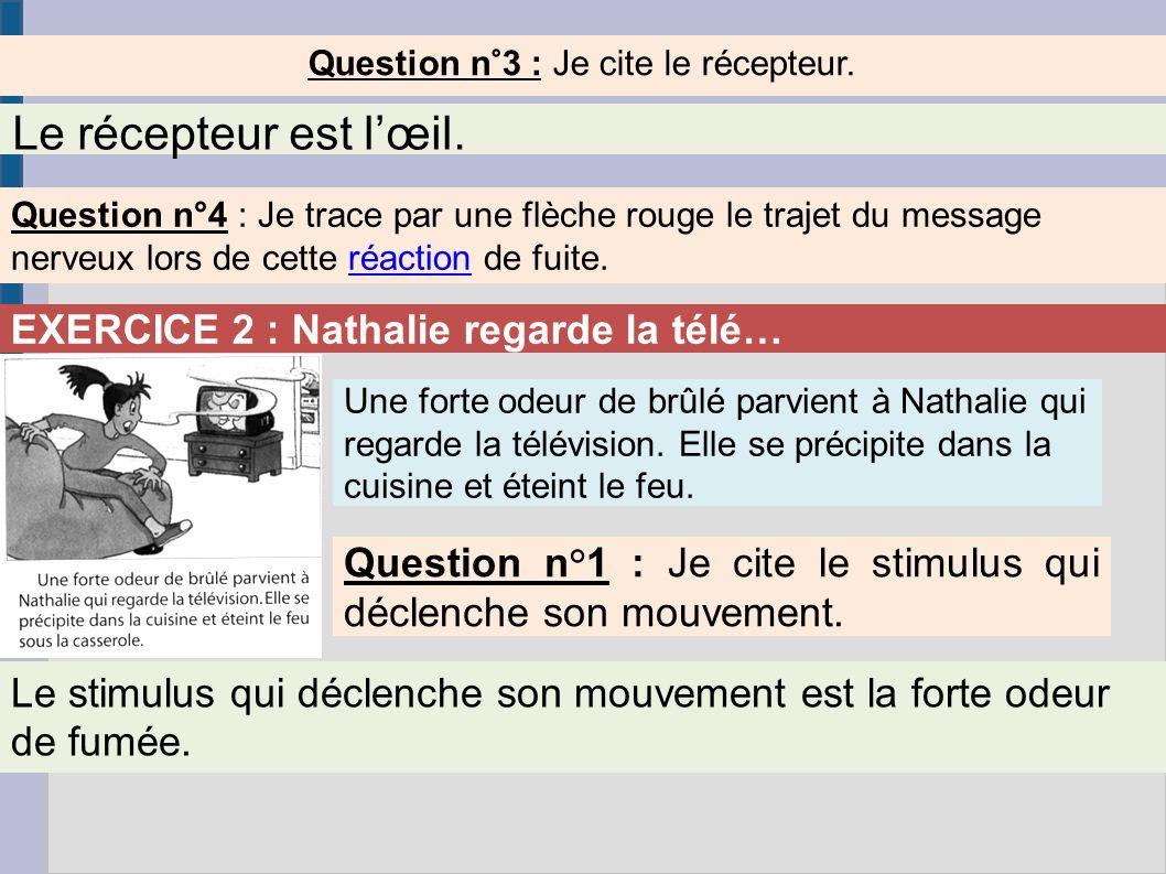 Question n°3 : Je cite le récepteur. Le récepteur est lœil. Question n°4 : Je trace par une flèche rouge le trajet du message nerveux lors de cette ré