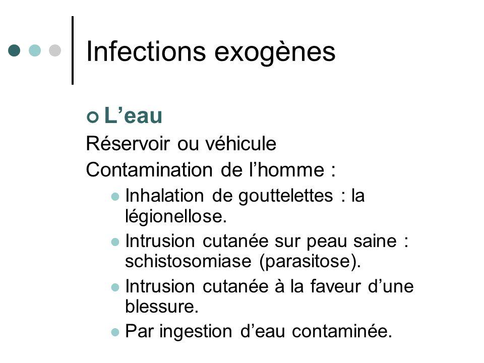 Leau Réservoir ou véhicule Contamination de lhomme : Inhalation de gouttelettes : la légionellose. Intrusion cutanée sur peau saine : schistosomiase (