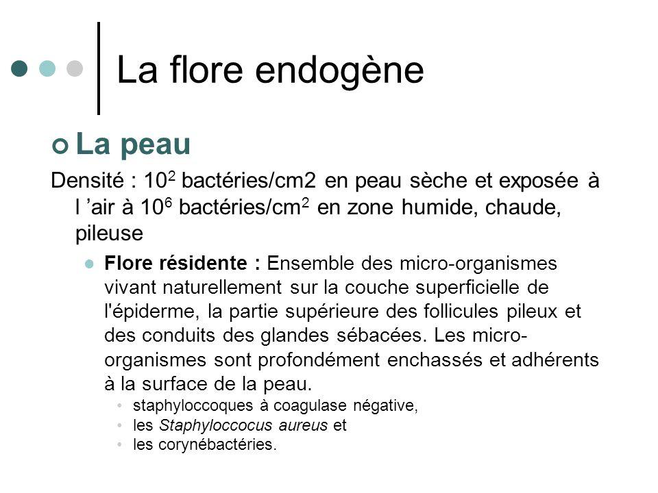 La flore endogène La peau Densité : 10 2 bactéries/cm2 en peau sèche et exposée à l air à 10 6 bactéries/cm 2 en zone humide, chaude, pileuse Flore ré