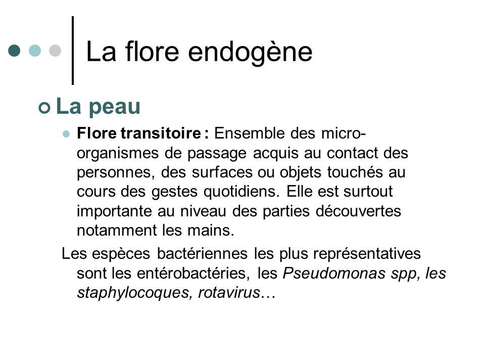 La flore endogène La peau Flore transitoire : Ensemble des micro- organismes de passage acquis au contact des personnes, des surfaces ou objets touché