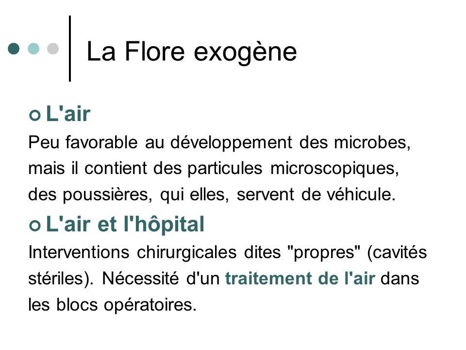 La Flore exogène L'air Peu favorable au développement des microbes, mais il contient des particules microscopiques, des poussières, qui elles, servent