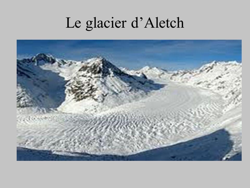 Le glacier dAletch