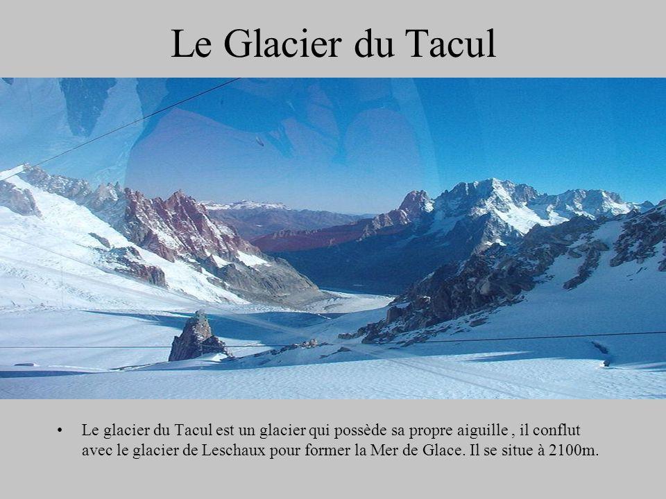 Le Glacier du Tacul Le glacier du Tacul est un glacier qui possède sa propre aiguille, il conflut avec le glacier de Leschaux pour former la Mer de Gl