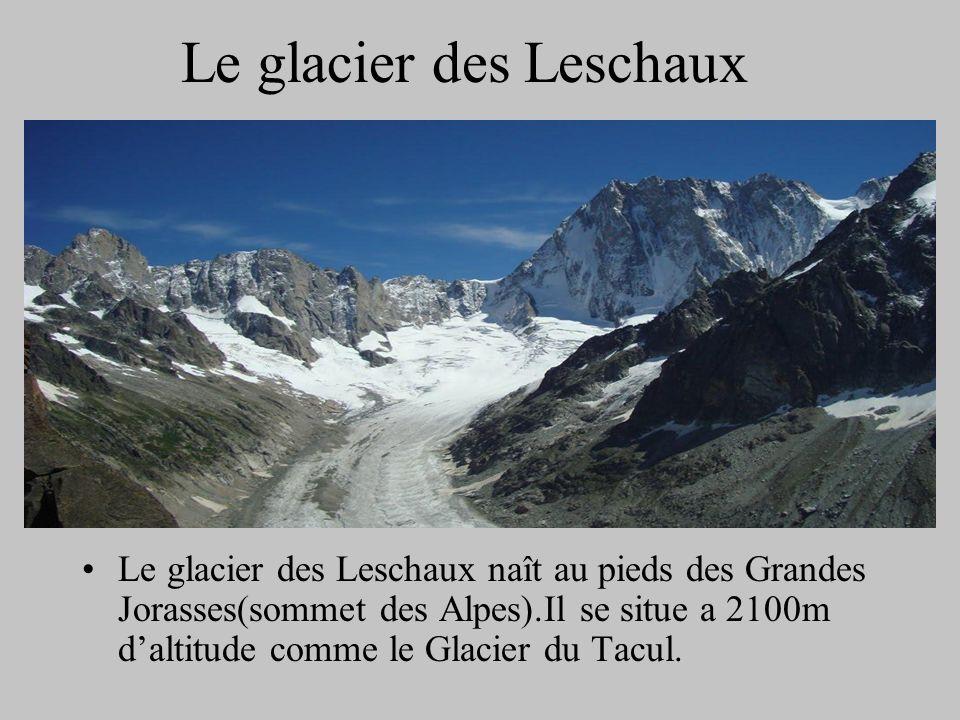 Le glacier des Leschaux Le glacier des Leschaux naît au pieds des Grandes Jorasses(sommet des Alpes).Il se situe a 2100m daltitude comme le Glacier du