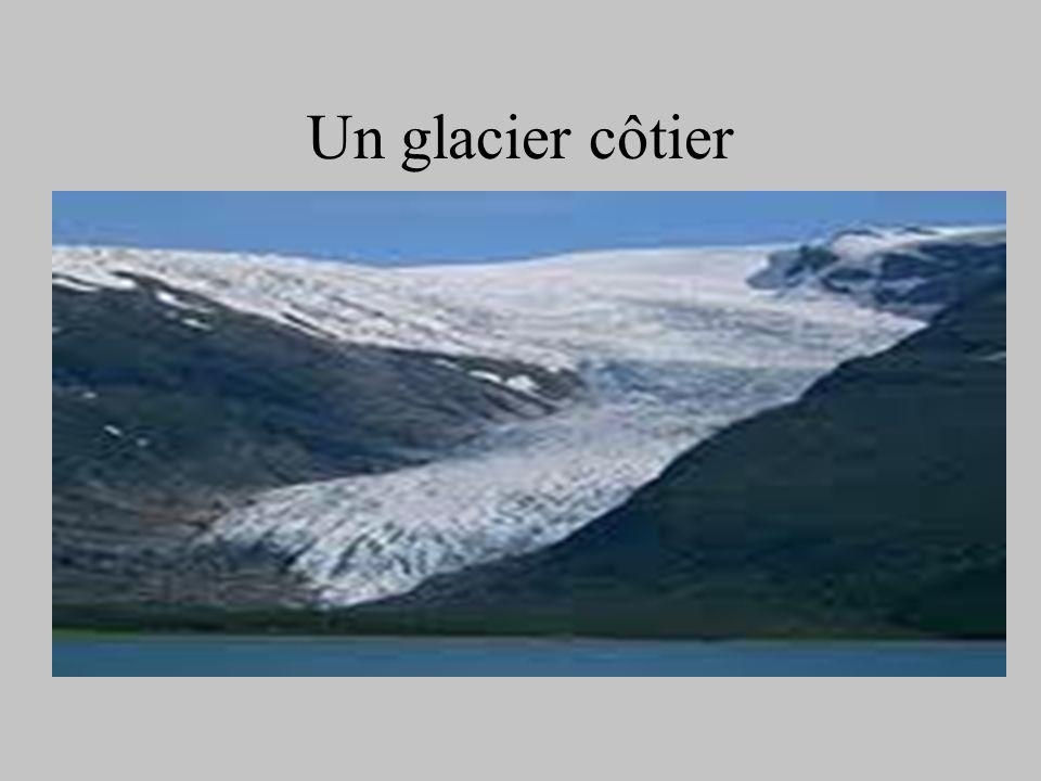 Un glacier côtier