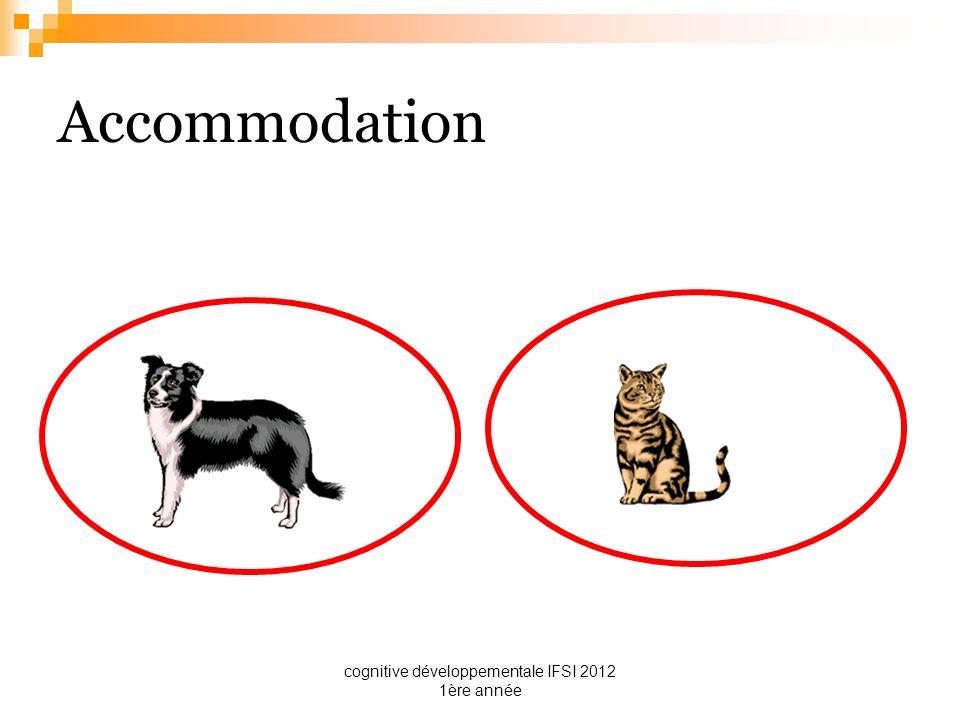 cognitive développementale IFSI 2012 1ère année Accommodation Exemple : dans la catégorie de lanimal à 4 pattes et à poil il y a le chien, chat, lion, ours…